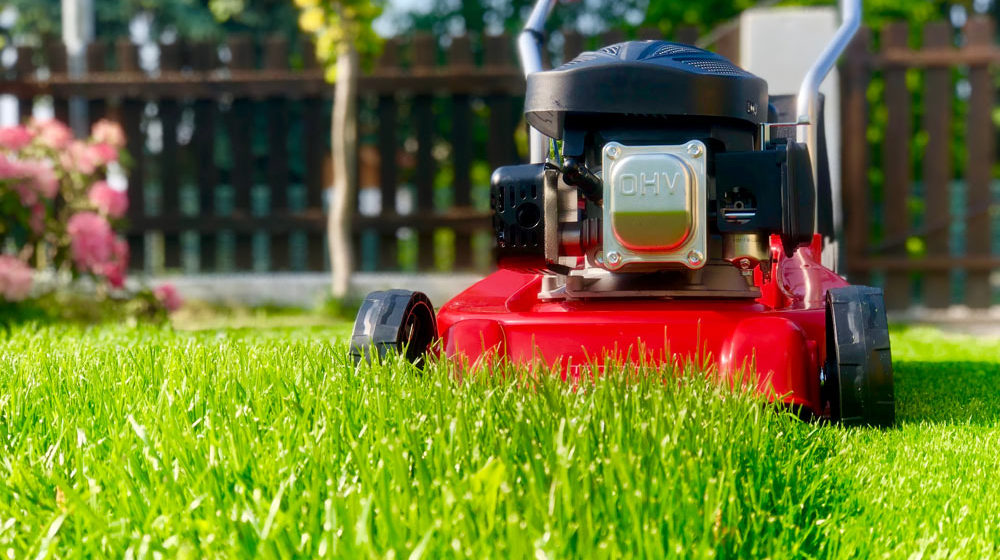 How To Maintain Your Lawn Mower Ogm
